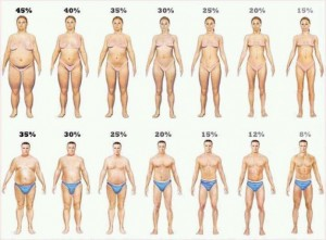 bodyfat-in-image