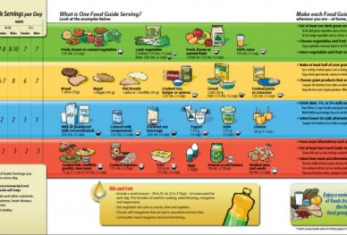 Canadian Food Guide 20...