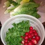 Salad-Prep-150x150
