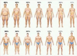 bodyfat-in-image