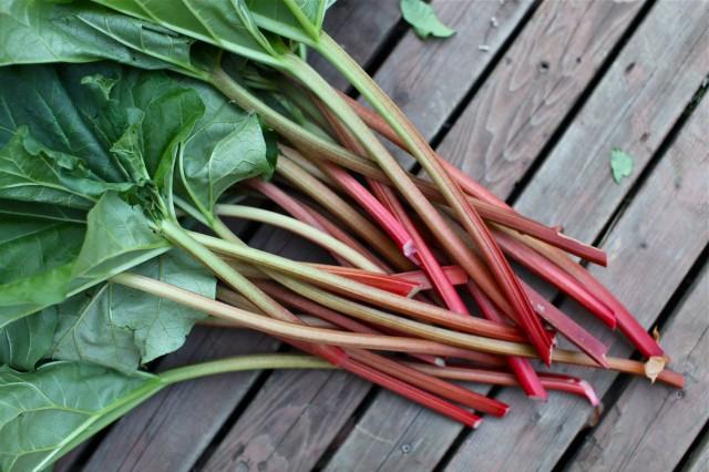 Vegan Gluten Free Strawberry Rhubarb Crumble- easier to make than to say!